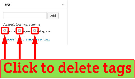 WordPress deleting tags from post