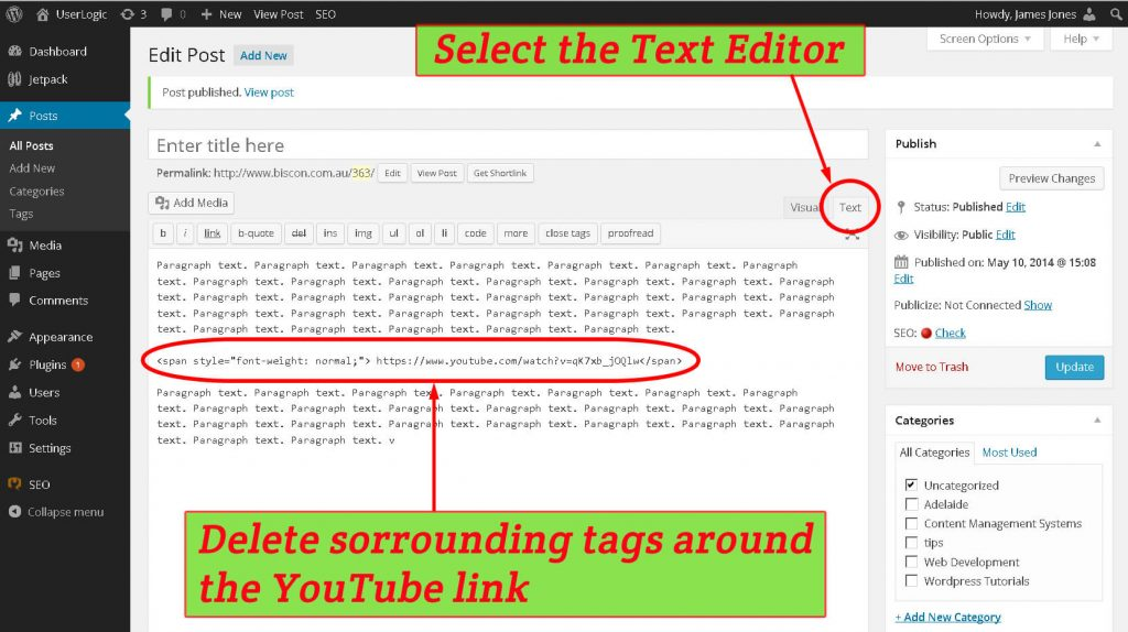 Removing the html tags sorrounding YouTube link